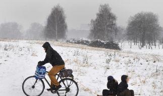 Ein wackerer Radfahrer in Dresden. (Foto)