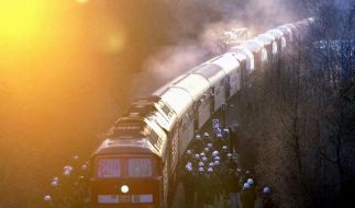 Ein Zug mit Castor-Behältern auf dem Weg nach Gorleben (Archivfoto). (Foto)
