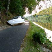 Eine Wespe hatte die Bootsfahrerin, die mit ihrem Partner auf der Fulda unterwegs war, derart angegriffen, dass diese vor Schreck einen Unfall verursachte. (Foto)