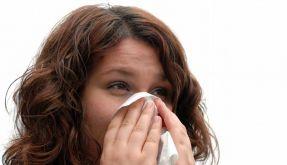 Einwegtaschentücher und der Verzicht aufs Händeschütteln zur Begrüßung sind bei Erkältungen die beste Wahl. (Foto)