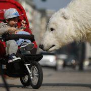 Eisbär Paula ist zum Glück nur ein Modell. Der Lebensraum ihrer echten Artgenossen ist in Gefahr.
