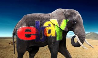 Elefant Ebay (Foto)
