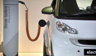 Elektroautos (Foto)