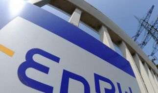 EnBW-Deal war verfassungswidrig (Foto)