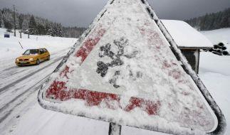 Endlich kommt Winter nach Deutschland. Doch vor allem Autofahrer freuen sich nicht über den Schnee. (Foto)