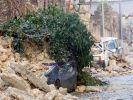 Erdbeben L'Aquila (Foto)