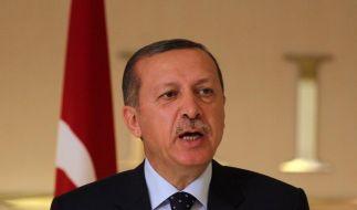 Erdogan wirft Frankreich Völkermord vor (Foto)