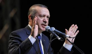 Erdogan (Foto)