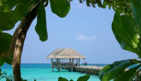 Erholungspause unter Palmen - mit wenigen Urlaubstagen können Sie mit den letzten Brückentagen 2012 Mini-Ferien genießen. (Foto)