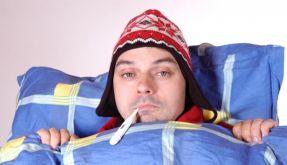 Erkältung (Foto)