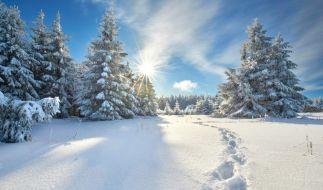Es wird winterlich in Deutschland. (Foto)