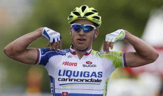 Etappensieg für Sagan - Martins Pechsträhne (Foto)