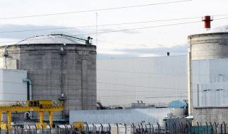 EU streitet über neue Atom-Subventionen (Foto)