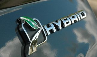 Euro-Hybrid (Foto)