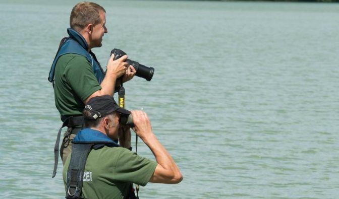 Exotische Tiere im Sommer-Loch Ness (Foto)