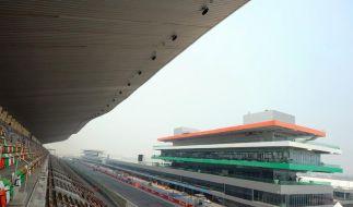 F1 expandiert ins Ungewisse: Abenteuer Indien (Foto)