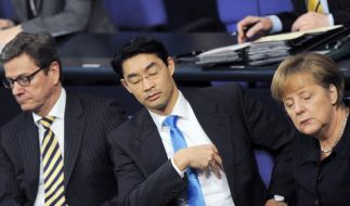 FDP im Tiefschlaf (Foto)