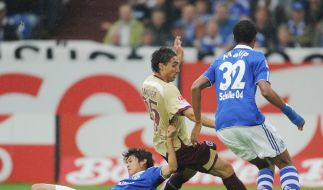 Fehlstart für Schalke perfekt  (Foto)