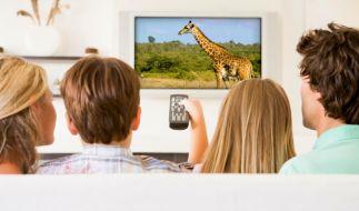 Flachbildfernseher werden immer billiger - und größer. (Foto)