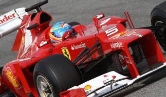 Formel 1 2012: Rennsaison im Zeichen des Nasenhöckers (Foto)