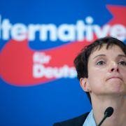 Frauke Petry findet: Es gibt zu viele Homosexuelle im deutschen TV. (Foto)