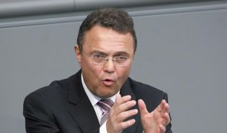 Friedrich fordert Verhaltenskodex gegen Fußballgewalt (Foto)