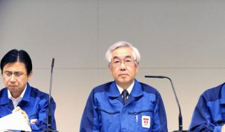 Fukushima: Tepco verwirrt mit Strahlenwerten (Foto)
