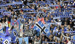 Fußballfans (Foto)