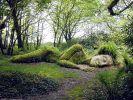 Gärten von Heligan (Foto)
