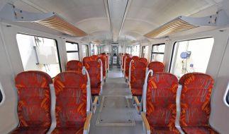 GDL setzt Streik fort: Wo Bahnreisende Infos finden (Foto)