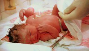 Geburt (Foto)