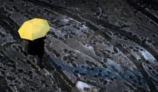 Gelb auf Grau (Foto)