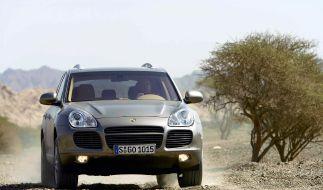 Geld soll aus der Wüste fließen (Foto)