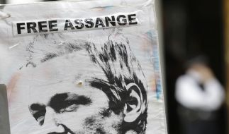 Gemessen am öffentlichen Ärgernis über das Urteil zu Pussy Riot muss man politische Fürsprecher von Assange mit der Lupe suchen. (Foto)