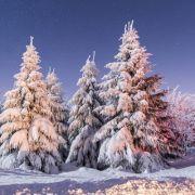 Gibt es 2017 wirklich weiße Weihnachten und den kältesten Winter seit 100 Jahren?