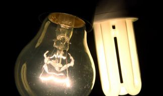 Glühbirne contra Energiesparlampe - auch Nostalgiker sollten inzwischen von den Vorteilen des energiesparenden Leuchtmittels überzeugt sein. (Foto)