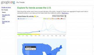 Google erkennt Grippewellen schneller als Behörden (Foto)