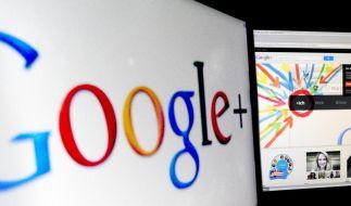 Google scheffelt Milliarden trotz teurer Vorstöße (Foto)