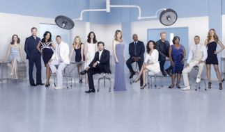 Greys Anatomy (Foto)