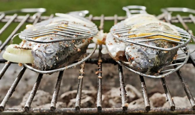 Grillen mit Fisch: Gesunde Alternative zu Wurst und Co. (Foto)