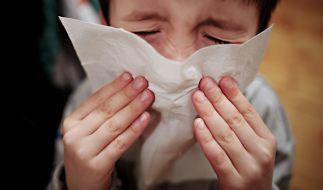 Grippe-Symptome sind nicht zu unterschätzen. (Foto)