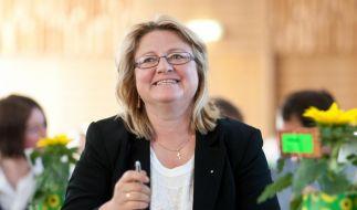 Grüne: Tillich muss Energiewende zur Chefsache machen (Foto)