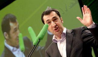 Grüne und FDP hoffen auf Entzauberung der Piraten (Foto)