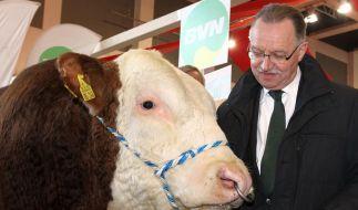 Grüne Woche eröffnet: Ruf nach sanfter Landwirtschaft (Foto)