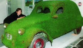 Grünes Auto (Foto)