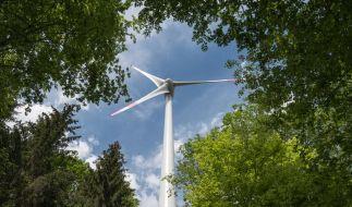 Grünes Investment: Nachhaltige Anlagemöglichkeiten werden beliebter. Vor einer Entscheidung sollten Verbraucher mehrere Produkte vergleichen. (Foto)