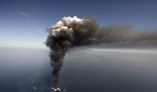 Gulf_Oil_Spill_Anniversary_NY602_444208818042011.jpg (Foto)