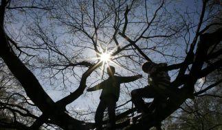 Gulliver bringt uns Sonne (Foto)