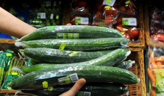 Gurken aus dem Handel genommen (Foto)
