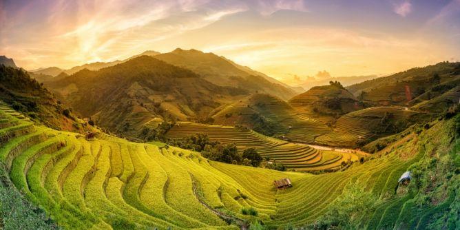 Vietnam (Bild)